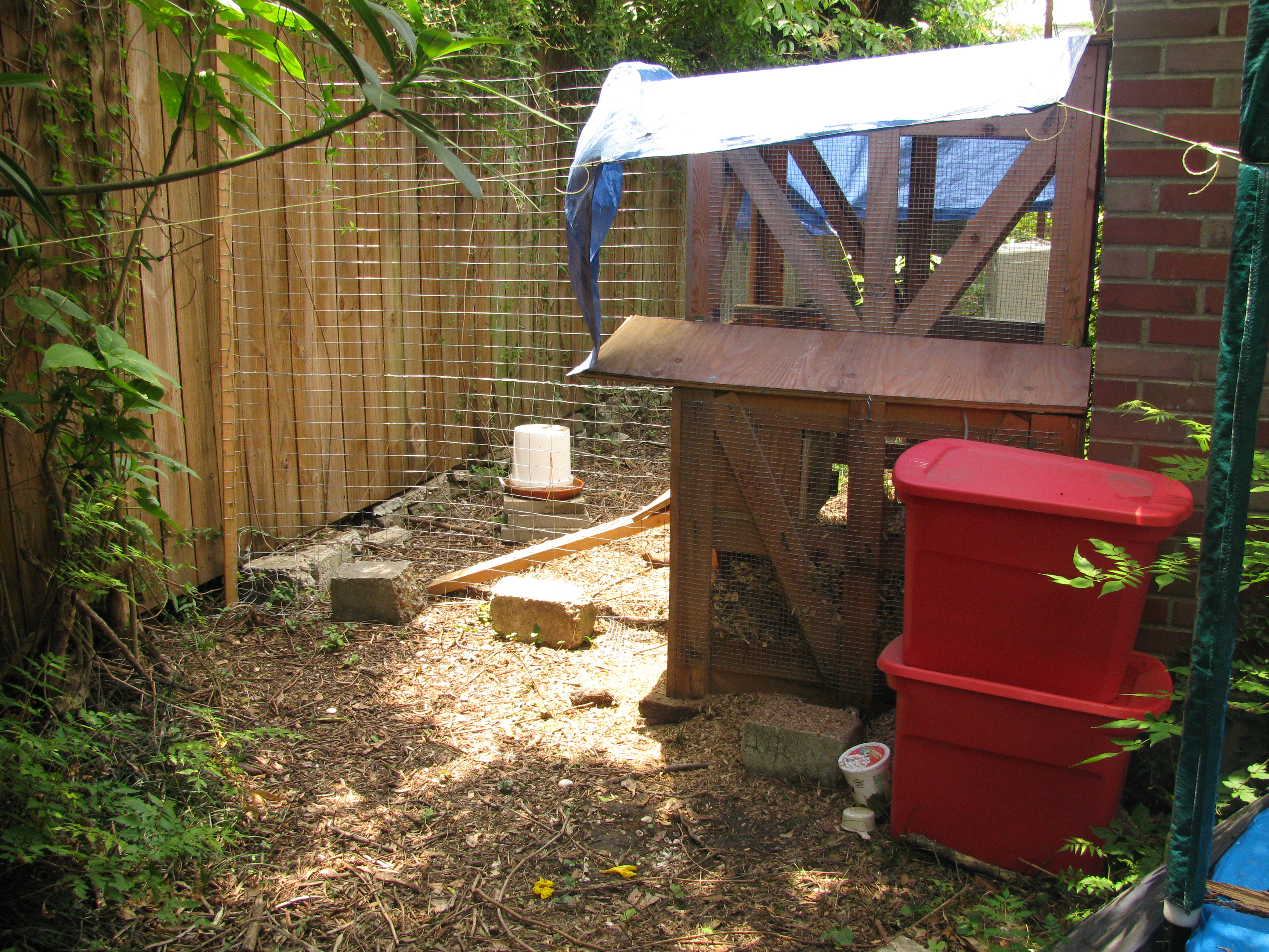 feeder i water apron img stringz waterers diy chicken gravity
